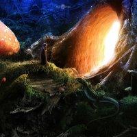 Сказочный лес :: A.L.F In-Yan