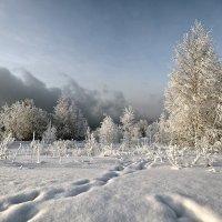 Зима :: Татьяна Попова