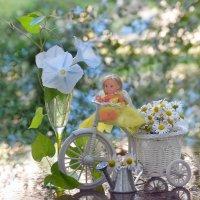 Цветок утренней зари :: Ольга