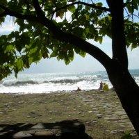 Море :: Надежда