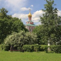 Новодевичий монастырь. :: Инна Щелокова