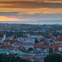 Fotostudio Akolit, Arkadi Baranov, Tallinn :: Аркадий  Баранов Arkadi Baranov