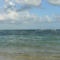 На дальнем берегу :: redfox