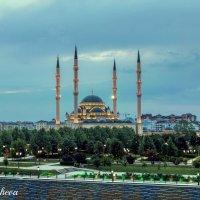 Сердце Чечни :: Салима Боташева