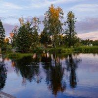 Последний солнца луч. :: Нина Червякова