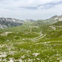 Национальный парк Дурмидор, горная часть :: Gennadiy Karasev