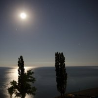 Теплая лунная ночь :: Леонид