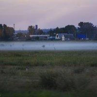 Утренний туман. :: юрий Амосов