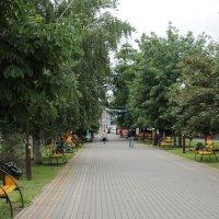 В парке :: Олег Афанасьевич Сергеев