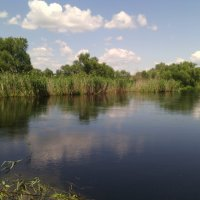 Ах река Битюг! :: Ольга Кривых
