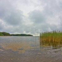 Зеленый островок :: Валерий Талашов