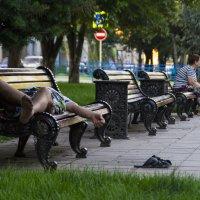 Сон в летний день :: Наталья Сиротина