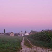 дорога в розовое утро :: Elena Wymann