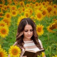 Лето желтого цвета :: Елена OST