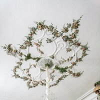 Плафон потолка столовой :: Marina Talberga
