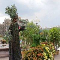 Живое дерево :: татьяна петракова