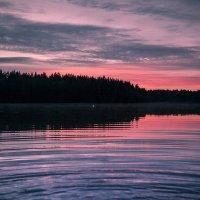 Краски лета :: Светлана Салахетдинова
