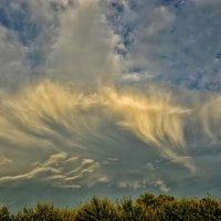Надвигается дождь :: Юрий Фёдоров
