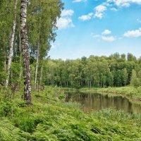 Маленькое озеро :: Дмитрий Конев