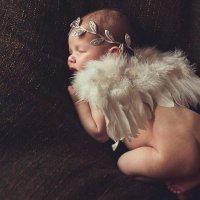 Малышка Ева, 22 дня :: Екатерина Короткова