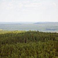 Вид с горы Большой камень на юго-запад :: Александр Иванов