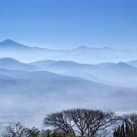 Мексика. Туман в Монте - Альбане :: Андрей Левин