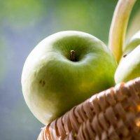 яблочки :: Екатерина Бильдер
