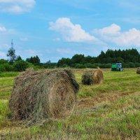 Сбор урожая :: Андрей Куприянов