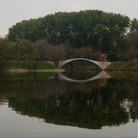 зеркало :: Дмитрий Паченков