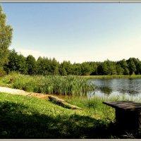 На рыбалке :: Михаил Цегалко