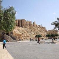 Сирия и Либан :: imants_leopolds žīgurs