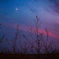 Загадочное небо :: Екатерина Пономарева
