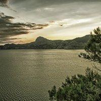 Где-то между небом и морем :: Елена Чижова