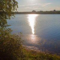 Солнечная дорожка :: Анатолий Иргл