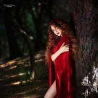 В лесу... :: Наталья Ремез