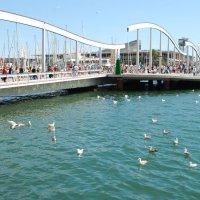 Порт Велль. Морской бульвар. Деревянный поворотный мост. :: Lara