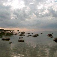 """""""Здесь оглушает тишина, здесь с камнем говорит вода..."""" :: VasiLina *"""