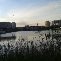 Москва, Братеево :: Аlexandr Guru-Zhurzh