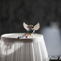 Белый демон :: Emil Buturlin