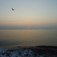 прощальный соловецкий закат :: Евгения Куприянова