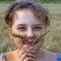 Пшеничные усы. :: Анатолий. Chesnavik.