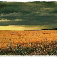Дождь близко :: Григорий Кучушев