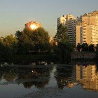 Просто летний вечер на пруду :: Андрей Лукьянов