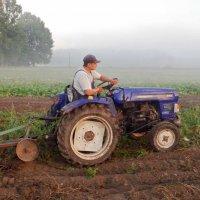 фермер :: юрий иванов