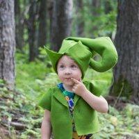 Лесной гномик :: Наталья Литвинчук