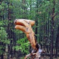 Лесной оберег :: Ольга