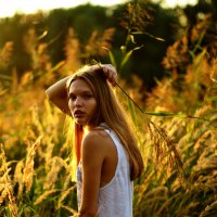 август 2016 :: Анна Селиверстова