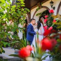 Розовая любовь :: Дарья Агафонова