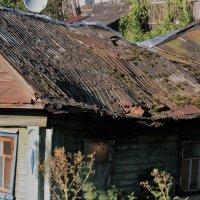 Домашняя старость :: Николай Масляев