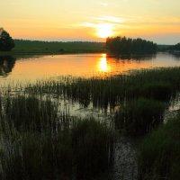 Вечер на озере :: сергей